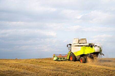 Harvesting. Combine harvester in wheat field. Autumn agricultural works. Rural landscape.