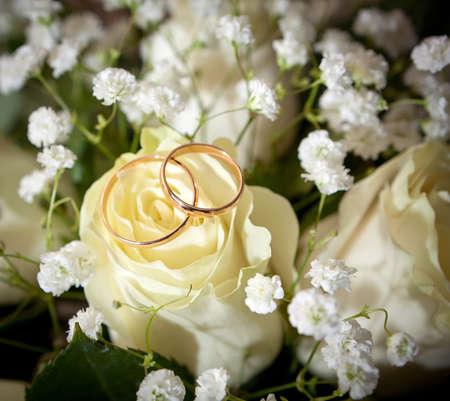 Gold wedding rings on flower  photo