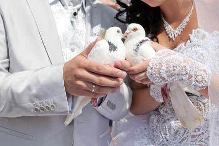 Wedding pigeons in hands of the groom and the bride  Reklamní fotografie