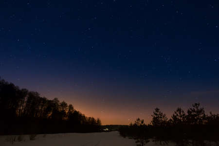 clear skies: Trees on a background of the night starry sky Stock Photo