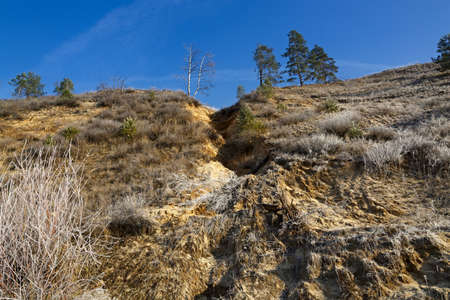 sandy soil: The destruction of the sandy river bank. The loss of trees in the soil erosion.