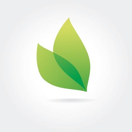 folha: Abstract vector folha verde logotipo conceito isolado no fundo branco. Ideias-chave