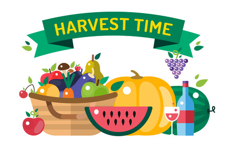 harvest time: Harvest time vector illustration. Harvest fruits and vegetables. Harvest basket and harvest isolated objects. Harvesting. Harvest background vector. Harvest  autumn season.