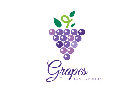 grapes on vine: Grapes vector isolated. Grapes icon. Grapes logo. Grapes wine or grapes vine. Grapes with green leaf isolated. Nature grapes logotype. Wine or vine logo icon. Fruits and vegetables. Grapes icons Illustration