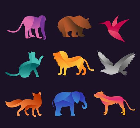 zwierzeta: Zestaw ikon wektorowych zwierząt zoo. Dzikie zwierzęta kolekcja wektorowych. Jungle zwierzęta, zwierzęta wektorowe, lis, lew, małpa, kotów i psów. Morze i zwierzęta leśne ikona.