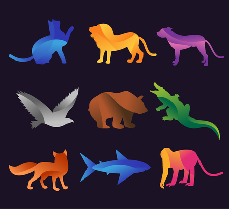 animales de la selva: Animal zoo vector icons set. Wild animals vector collection. Jungle animals, vector animals, fox, lion, monkey, cat and dog. Sea and forest animals icon.