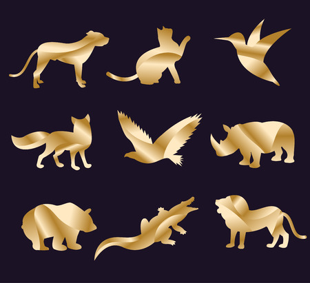 animales de la selva: Iconos zool�gico vector animal set. Los animales salvajes de vectores de recogida. Animales de la selva, animales vector, zorros, lobos, monos, perros y gatos. Mar y animales del bosque icono. Vectores