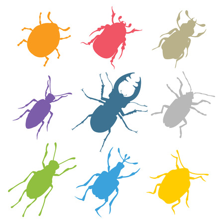 an insect sting: Colorful insects vector collection. Illustration
