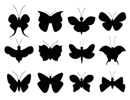 icon collection: Butterflies black and white flat style vector collection. Vector butterfly set. Butterfly colorful different types. Butterfly silhouette isolated on white background. Butterfly black and white Illustration