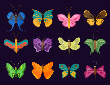 butterfly: Colorful butterflies flat style vector collection. Vector butterfly set. Butterfly colorful different types. Butterfly  silhouette isolated on dark background. Butterfly blue, butterfly colorful Illustration
