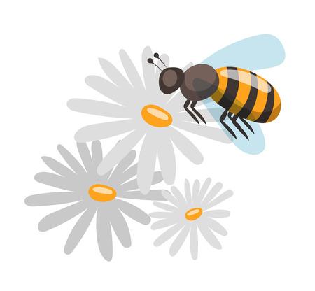abejas: Bee estilo de dibujos animados ilustraciones vectoriales. los símbolos del vector apiario. Abeja, miel, flores de abejas iconos. La miel natural para la salud la producción de alimentos. Abeja, flores, colmena y cera. La miel de abeja icono del vector Vectores
