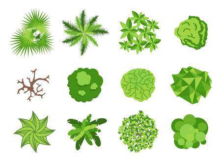 Landscaping garden design elements. Landscaping plants, landscaping trees vector icons isolated. Landscaping plan vector elements icons. Landscape garden design constructor. Landscaping design Ilustração