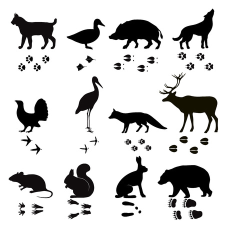 Wild animals vector paw footsteps black silhouette shape isolated on white background. Animals steps, foot, footprint set vector illustration. Animals foot steps shapes vector silhouette