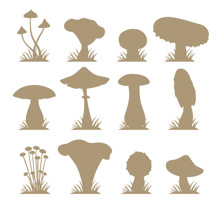 cooking ingredients: Mushrooms vector silhouette illustration set. Different types of mushrooms isolated on white background. Nature mushrooms for cook food and poisonous mushrooms flat style Illustration