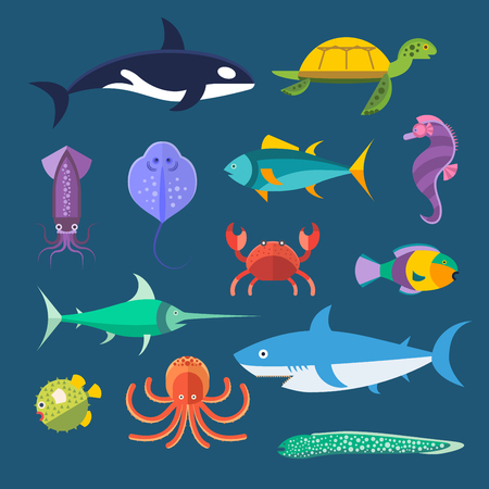 whale shark: Vector set of sea marine fish and animals. Shark, squid, octopus, sawfish, hedgehog, saw, crab, dolphin, killer whale, whale, clownfish, sea horse, turtle, stingray, moray. Sea wild fish collection illustration