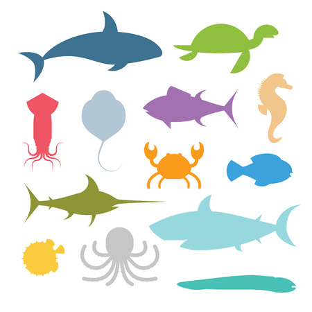 Vector icons set of sea marine fish and animals. Shark, squid, octopus, sawfish, hedgehog, saw, crab, dolphin, killer whale, whale, clownfish, sea horse, turtle, stingray, moray. Sea wild fish collection illustration