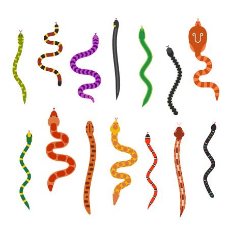 Vector flache Sammlung Schlangen isolted auf shite Hintergrund. Vector Schlangen flachen Stil. Verschiedene Schlangen Hautbeschaffenheit