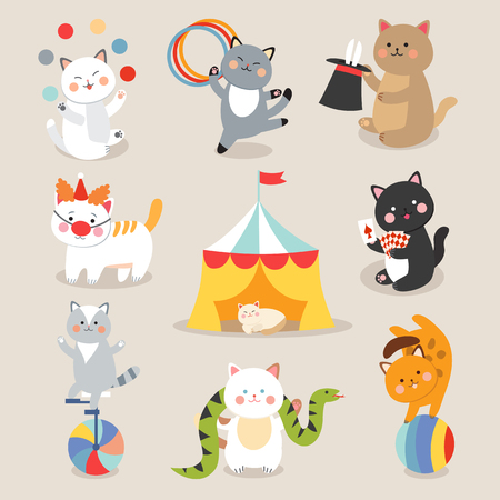 kitten cartoon: Circus cats vector. Set of cheerful circus cats. Vector illustration for childrens with circus cats. Isolated cartoon animals in circus. Cute Circus playing cats.