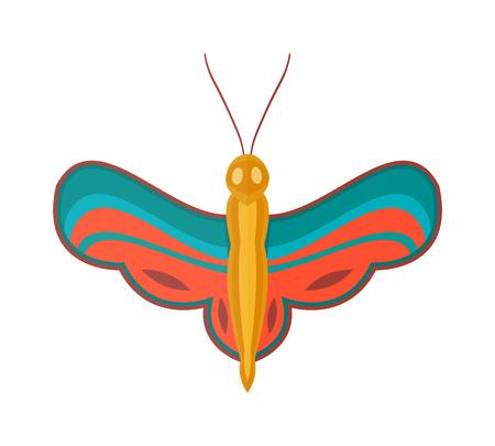 brassicae: Flat butterfly vector. Illustration