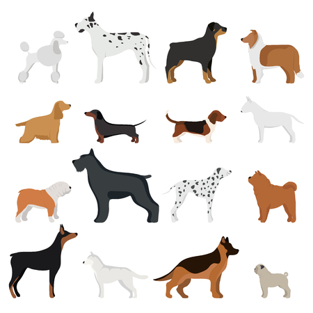 Dog breed vector illustration.