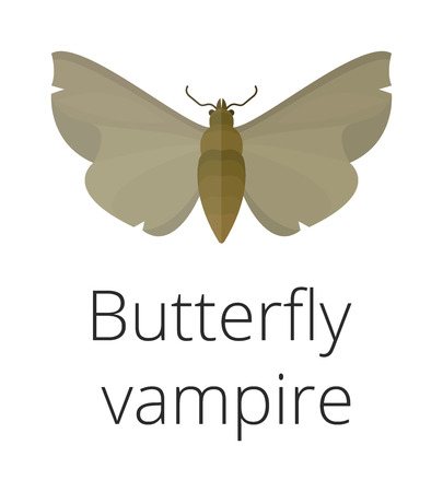 Vampire butterfly of Death vector illustration. Illustration
