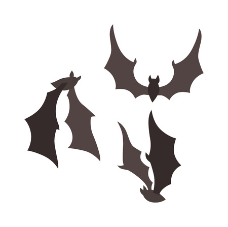 bat animal: Vampire bat vector illustration.