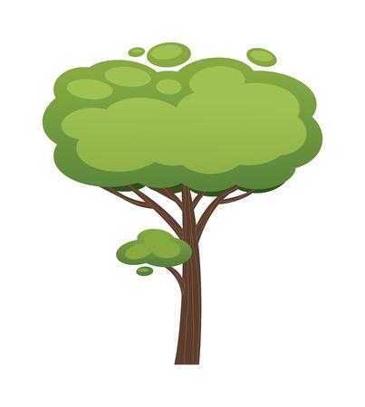 acacia tree: Cartoon tree vector illustration. Cartoon tree isolated on white background. Cartoon tree vector icon illustration. Cartoon tree isolated vector. Cartoon tree symbol