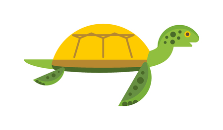 sea creature: Vector illustration of a cute cartoon turtle. Happy sea turtle cartoon. Cartoon Turtle character animal. Cartoon Turtle reptile vector. Cartoon Turtle wildlife. Ocean animals Illustration