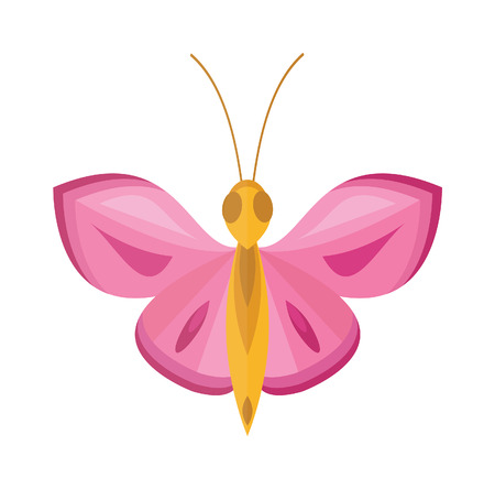 brassicae: Pink butterfly vector. Pink  butterfly isolated on white background. Pink butterfly vector illustration. Colored flat Pink butterfly isolated on white background.