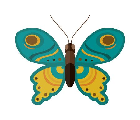 green butterfly: Flat butterfly vector. Flat butterfly isolated on white background. Flat butterfly vector illustration. Colored flat butterfly isolated on white background. Butterfly vector