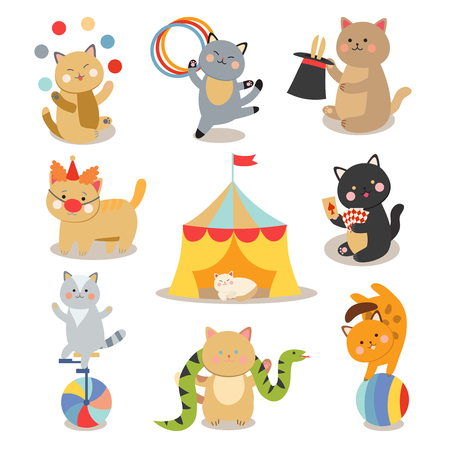 cats playing: Circus cats vector. Set of cheerful circus cats. Vector illustration for childrens with circus cats. Isolated cartoon animals in circus. Cute Circus playing cats.