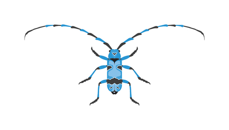 hercules: Beetle flat insect bug in cartoon style vector. Simple beetle insect wildlife. Cartoon bug beetle color nature insect. Vector beetle cartoon style bug.