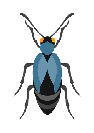 coleoptera: Beetle flat insect bug in cartoon style vector. Simple beetle insect wildlife. Cartoon bug beetle color nature insect. Vector beetle cartoon style bug.