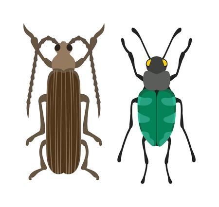 Käfer flach Insekt, Fehler im Cartoon-Stil Vektor. Einfache Käfer Insekt Tierwelt. Cartoon Bug Käfer Farbe Natur Insekt. Vector Käfer-Cartoon-Stil-Fehler. Vektorgrafik