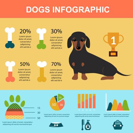 ダックスフント犬のインフォ グラフィックのベクターの要素の再生を設定します。フラット スタイルのダックスフント犬のインフォ グラフィック