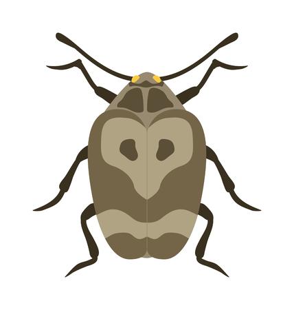 Käfer flach Insekt, Fehler im Cartoon-Stil Vektor. Einfache Käfer Insekt Tierwelt. Cartoon Bug Käfer Farbe Natur Insekt. Vector Käfer-Cartoon-Stil-Fehler.