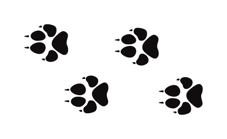 animal  bird: Animal black foots and wildlife animal mammal steps, pet traces. Animal foots silhouette steps Animal foot prints and tracks isolated steps traces on white for wildlife concept design vector.