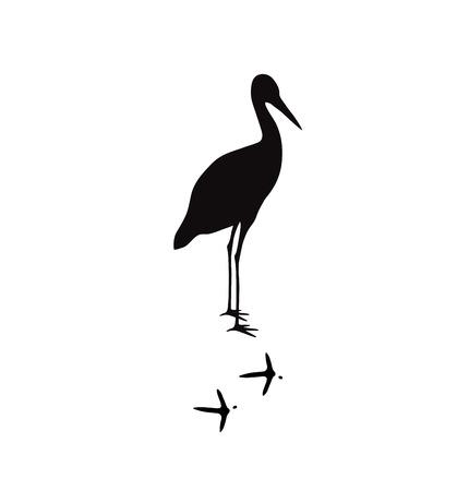 animal silhouette: Wild bird animal black silhouette and wild animal predator symbol. Predator silhouette. Wild life black animal silhouette. Black silhouette wild animal zoo vector. Illustration