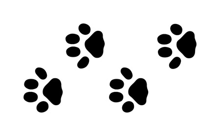 animal tracks: Animal black foots and wildlife animal mammal steps, pet traces. Animal foots silhouette steps Animal foot prints and tracks isolated steps traces on white for wildlife concept design vector.