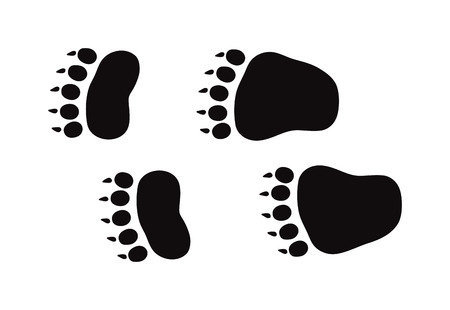 animal foot: Animal black foots and wildlife animal mammal steps, pet traces. Animal foots silhouette steps Animal foot prints and tracks isolated steps traces on white for wildlife concept design vector.