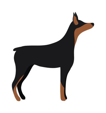 angry dog: Enojado perro mascota plana y vector de perro. ilustración de vectores animales perro perdiguero plano. Enojado peligro perro fsitting estilo lat Vectores