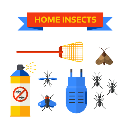 pest control equipment: Home insects house protection and home insects control equipment. Home insects termite insecticide. Pesticide nature sprayer vector icons. Pest control worker spraying pesticides home insects vector.