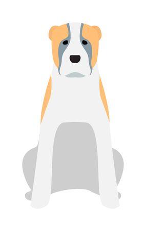 domestic animal: Labrador dog pet and icon labrador white dog vector. Black Labrador retriever dog domestic animal vector illustration.