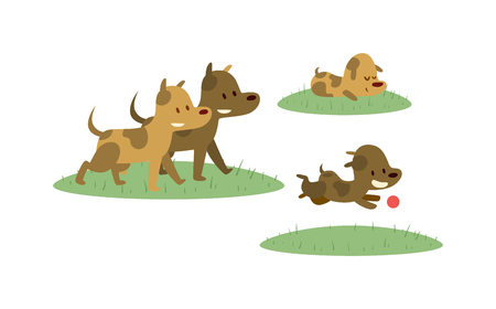 cartoon ball: Dogs happy family have fun and dogs cheerful family running vector. Happy dogs family walking with ball in green field cartoon vector illustration.