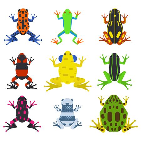 rana caricatura: Rana de dibujos animados de los animales tropicales y iconos de la naturaleza de dibujos animados de la rana verde. Colección de ilustración vectorial de dibujos animados rana divertida. Verde, madera, rojo ranas tóxicas, muebles patinados plana aislada en el fondo blanco