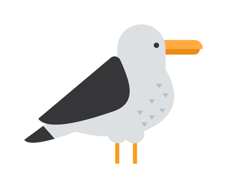 seabird: Gull flight bird and seabird gull. Natural larus gull beach free bird, wildlife seabird cartoon looking gull. Great black-backed gull larus marinus sea wildlife animal and beautiful bird flat vector.
