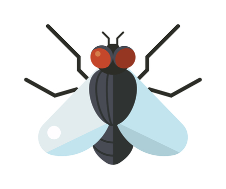 House fly insect and cartoon black fly insect. Insect hairy legs biology housefly. Bluebottle fly insect species calliphora vomitoria bug animal nature macro pest with big eyes hairy legs flat vector. Ilustrace