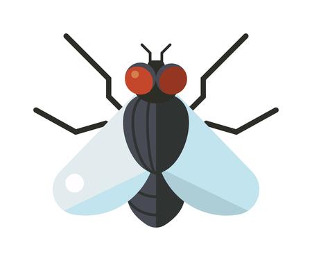 Huisvlieg insect en cartoon zwarte vlieg insect. Insect harige benen biologie huisvlieg. Vlieg insectensoorten Calliphora vomitoria insect dierlijke natuur macro ongedierte met grote ogen harige benen plat vector.
