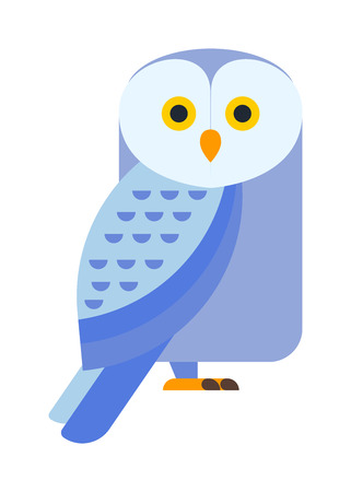 virginianus: Owl wild bird and nature cartoon owl. Owl blue flat bird character predator flying animal. Great horned Owl, bubo virginianus subarcticus flat cartoon wildlife nature bird vector illustration.
