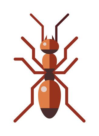 hormiga: Hormiga insecto peque�o y trabajador de la hormiga linda. Marr�n animal car�cter hormiga, vida salvaje rufa de dibujos animados hormiga poco trabajador. bosque hormiga roja rufa peque�o insecto de la antena, la naturaleza de la historieta gr�fica trabajador marr�n vector plana.